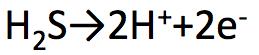 硫化水素 半反応式