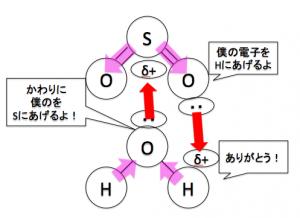 酸性酸化物 水 反応