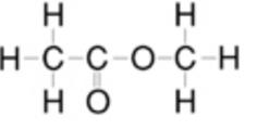酢酸メチル