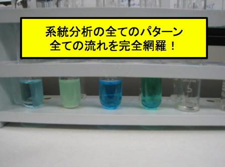 陽イオン 系統分析 方法 反応