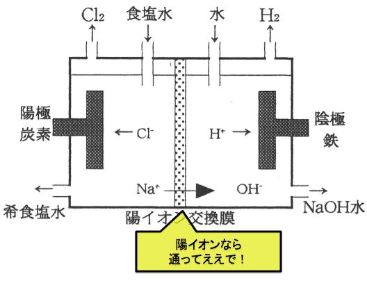 陽イオン交換膜