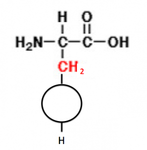 アラニン 89 アミノ酸の基本