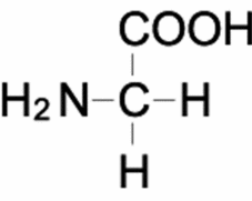 グリシン 分子量