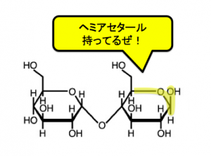 ヘミアセタール,グリコシド結合,二糖類,還元性