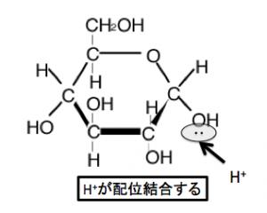 グリコシド結合 配位結合