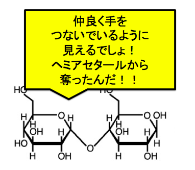 グリコシド結合とは?加水分解の反応も合わせてどうぞ! | 化学受験テクニック塾