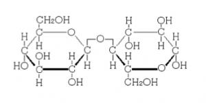 二糖類の語呂の覚え方と還元性を徹底的に理解する! | 化学受験テクニック塾