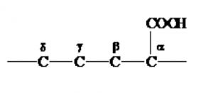 α-アミノ酸,とは