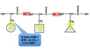 α-アミノ酸,骨格