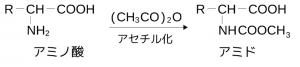 アミノ酸,アセチル化