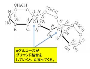 アミロース,グリコシド結合,