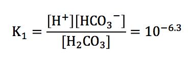炭酸の電離定数